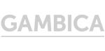logo_cambica